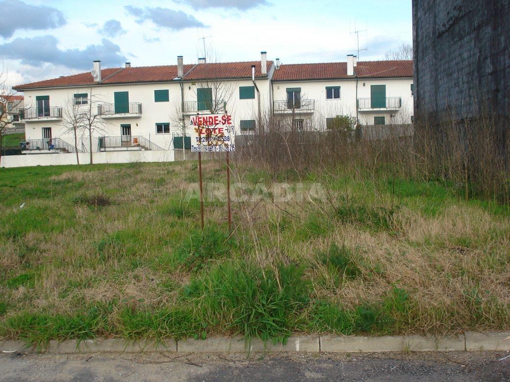 Arcadia-Imobiliaria-Lote-para-construcao-em-UF-Real-Dume-e-Semelhe-2