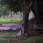 Casa-Centenaria-na-Zona-Historica-de-Braga-exterior-2