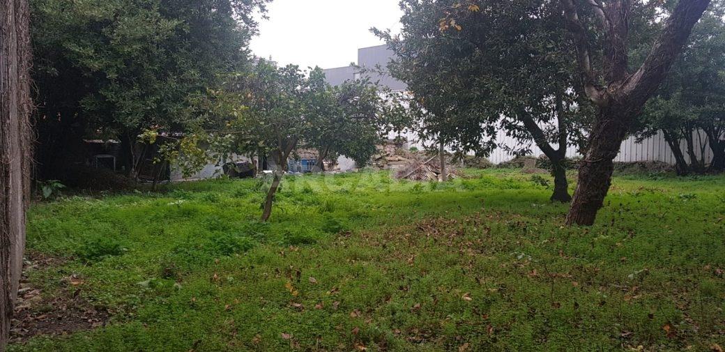 Casa-Centenaria-na-Zona-Historica-de-Braga-terreno