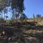Lote-para-construcao-em-vila-verde-3