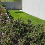 Moradia-Terrea-V4-em-Braga-Arcadia-Imobiliaria-exterior-jardim-vista-exterior