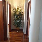 Arcadia-Imobiliaria-Apartamento-T2-Mobilado-e-Equipado-corredor quartos
